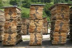 2 hanno tagliato il nuovo legno Fotografia Stock Libera da Diritti