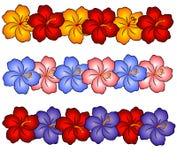 2 hibiscus της Χαβάης λουλουδιώ& Στοκ Φωτογραφία
