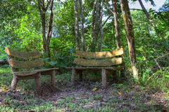 2 houten banken in een bos Royalty-vrije Stock Foto