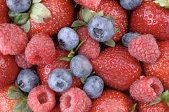 2 jagodowego berrylicious Zdjęcia Stock