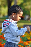 2 Jahre alte Junge, die in Park gehen Lizenzfreies Stockfoto