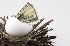 2 jajka gniazdeczko Fotografia Stock