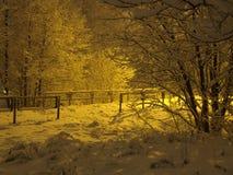 2 janvier ambre Photographie stock libre de droits