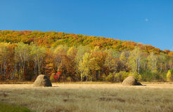 2 jesień krajobraz Obrazy Royalty Free