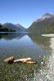 2 jeziorna bela Zdjęcie Stock