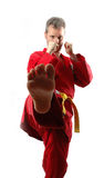2 jiu jitsu Zdjęcia Royalty Free