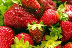 2 jordgubbar vol Royaltyfria Foton