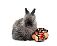2 kanin easter Royaltyfria Bilder