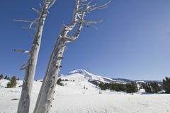 2 kapiszonów góry narty skłon Zdjęcia Royalty Free