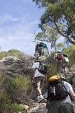 2 klättra grupp rödbrun mt Arkivbild