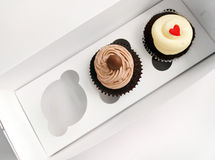 2 kleine Kuchen im speziellen Trägerkasten Stockbilder
