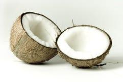 2 kokosów Zdjęcia Royalty Free