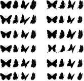 2 kolekcję motyli Obrazy Stock