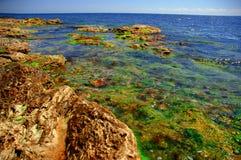 2 kolorów brzegu morza czarnego Zdjęcie Royalty Free