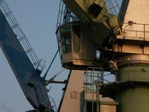 2 kolorowego crane ' a Zdjęcia Stock