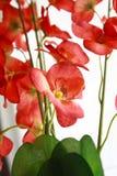 2 konstgjorda blommor Arkivbilder