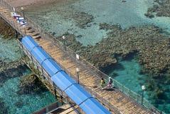 2 koralowej formaci Fotografia Royalty Free