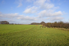 2 krajów kursowy przecinający equestrian Zdjęcia Royalty Free