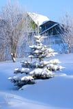 2 krajobrazowa zimy. Obrazy Royalty Free