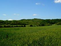 2 krajobrazu Obraz Stock
