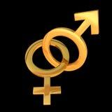 2 kvinnligmanligsymboler vektor illustrationer
