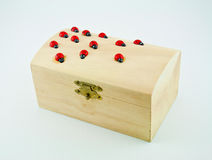 2 ladybugs коробки Стоковое Фото