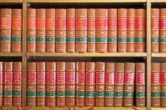2 lagliga böcker royaltyfri bild