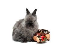 2 lapin Pâques Images libres de droits