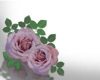 2 Lavender Roses Corner design. Image composition of 2 Lavender Roses for background or wedding invitation vector illustration