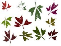 2 leaves stock illustrationer