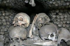 2 ludzkiej kości czaszki obraz royalty free