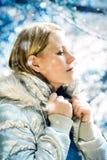 2 meli zima s Fotografia Royalty Free