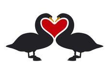 2 miłości bodylanguage projektu Fotografia Stock