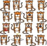 2 śmiesznego tygrysa Fotografia Stock