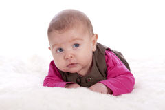2 months old baby looking up Royalty Free Stock Image