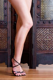 2 nogi obrazy stock