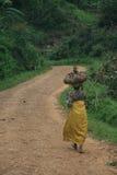 2 novembre 2008. Rifugiati dal Dott Congo Fotografia Stock Libera da Diritti