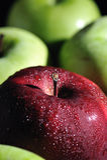 2 nya äpplen Royaltyfria Foton