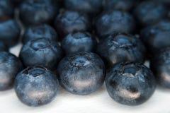 2 nya organiska för blåbär Arkivbild