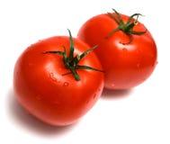 2 nya saftiga tomater Royaltyfria Bilder