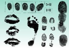 2 odcisków palców odcisk stopy wargi Obrazy Stock