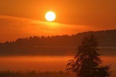 2 olśniewający słońce Zdjęcie Royalty Free