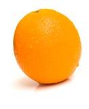 2 orange mogna hela Fotografering för Bildbyråer