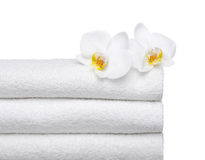 2 orchids on fresh towels. Two orchids on smooth towels. isolated on white background.  iso 100 Stock Photos