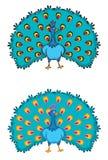 2 påfåglar Royaltyfri Foto