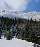 2 panoramatic widok Obraz Stock