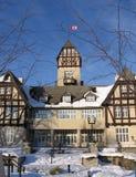 2 park assiniboine piwonii Zdjęcia Royalty Free