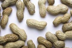 2 peanut tła Zdjęcie Royalty Free