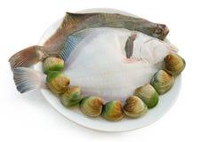 2 pescados y almejas de la platija de la arena Imagen de archivo libre de regalías