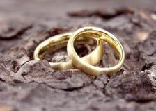 2 pierścionków poślubiać Fotografia Royalty Free